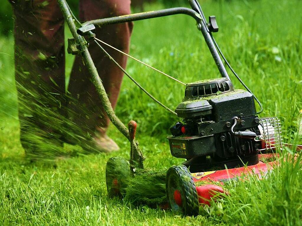 Gartenpflege  Gartengestaltung & Gartenpflege, Gartenservice vom Profi ...